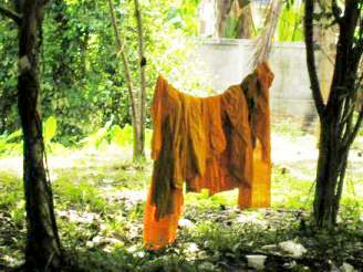 Monk's laundry; Courtesy Ross Guldenbrein