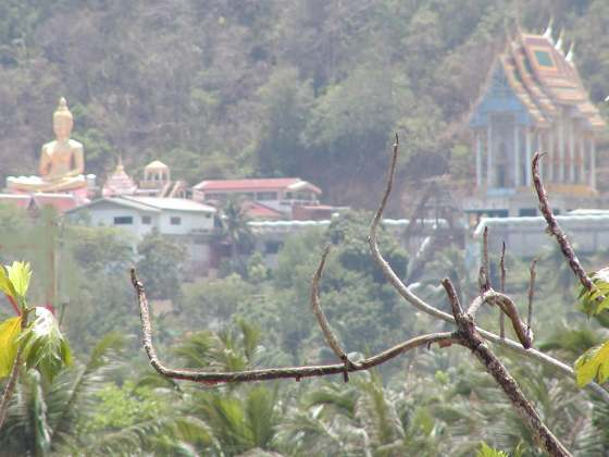 Wat Thepkhanchonchit seen from Wat Kositvihan, Phuket